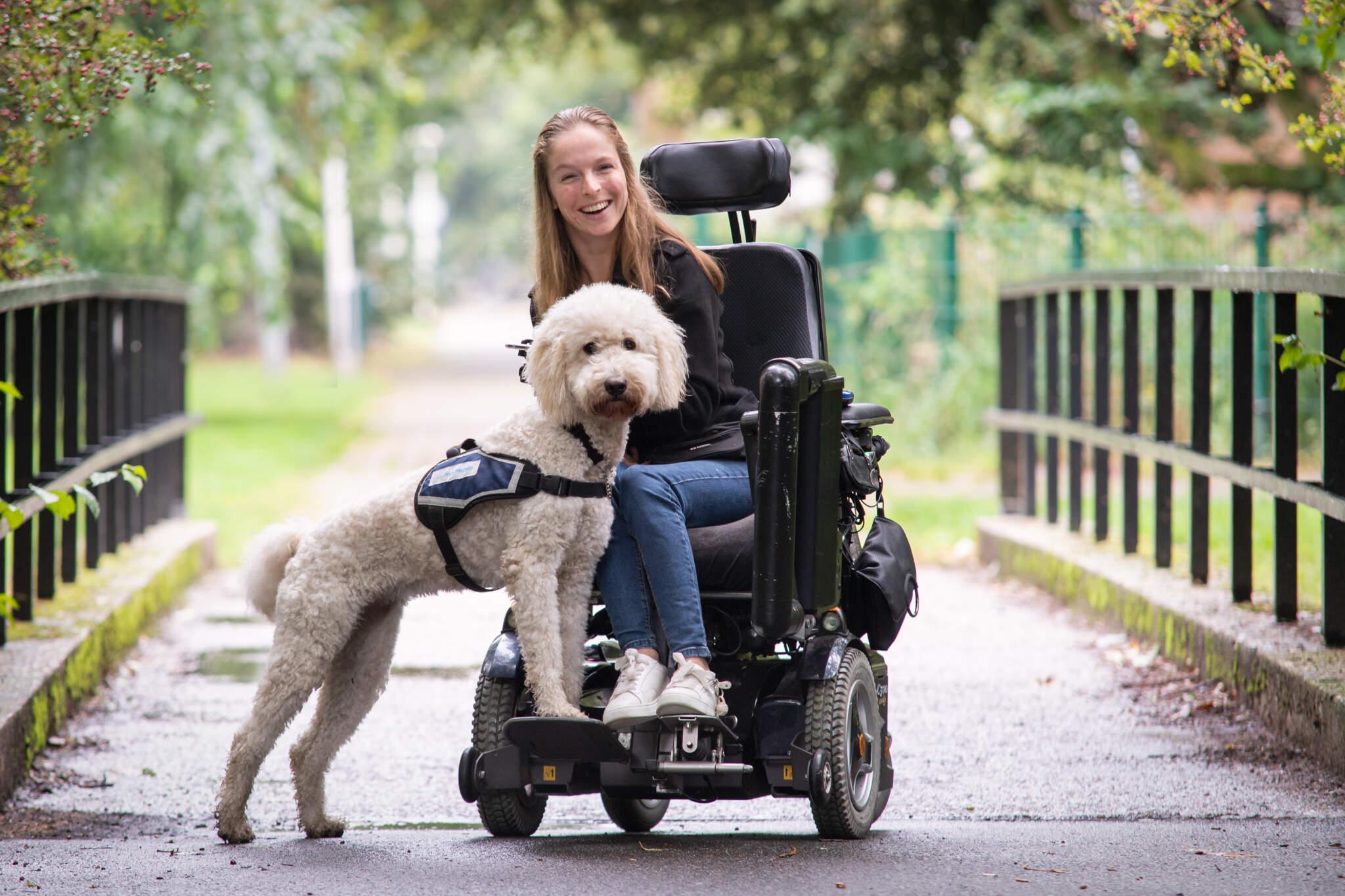 hulphond en rolstoel